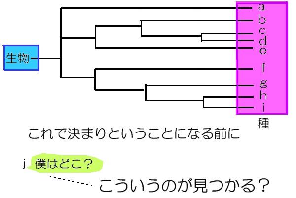 20121007211900c92.jpg