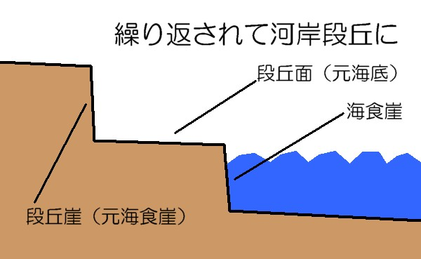 Geographico! 海岸段丘の作られ方