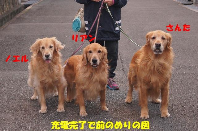 2014121622224941e.jpg