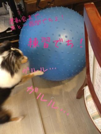 fc2blog_20120909150230b57.jpg