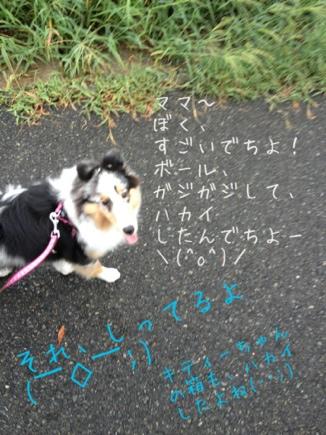 fc2blog_20120911125020bf2.jpg