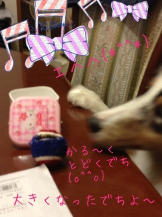 fc2blog_20120911125522b3c.jpg