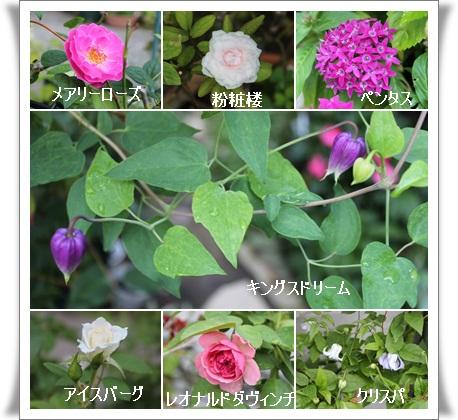 20120904152734106.jpg