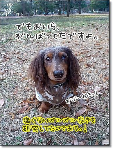 1227_01.jpg