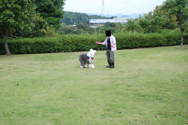 2012_0924_122650-DSC_0244_convert_20121011182502.jpg