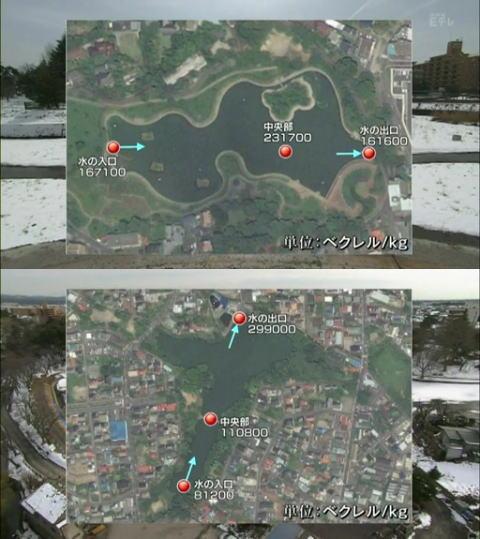 20120618-5.jpg