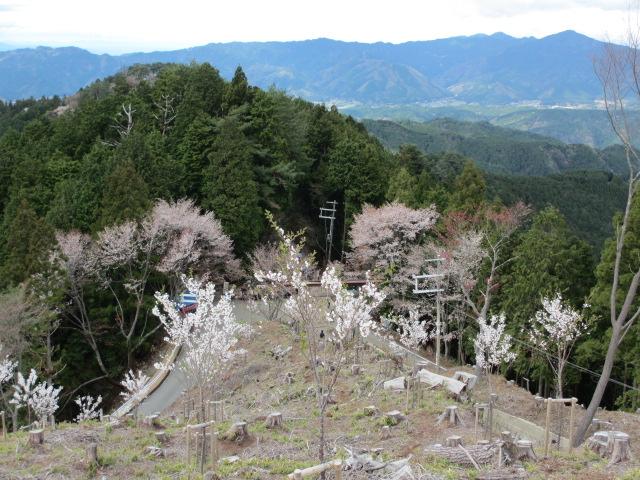 吉野水分神社~義経の隠れ塔12