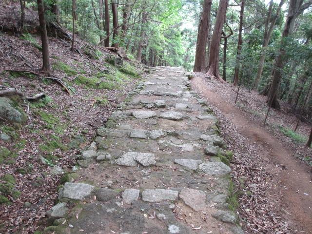 神倉神社 石段9