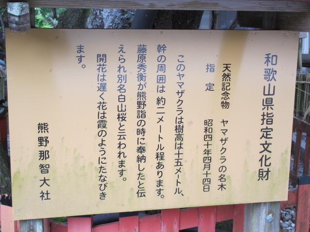 熊野那智大社15