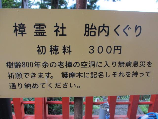 熊野那智大社32