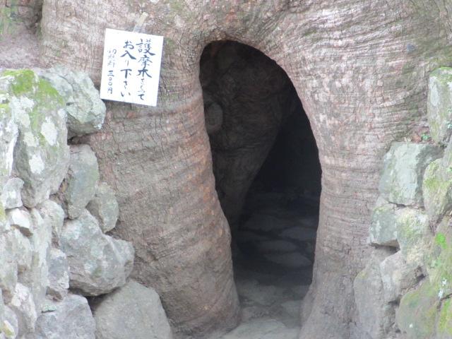 熊野那智大社34