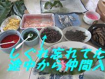 20120618110413abb.jpg