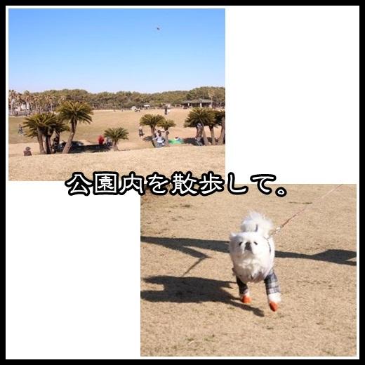 0_20130213110625.jpg