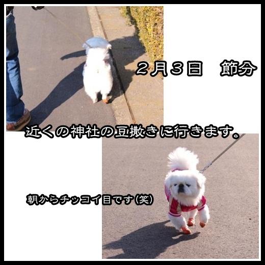 1_20130206111401.jpg