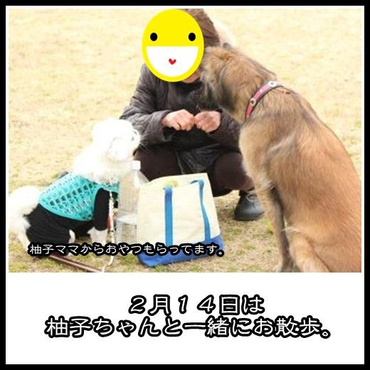 1_20130221111524.jpg