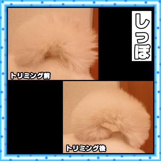 20120629172217604.jpg