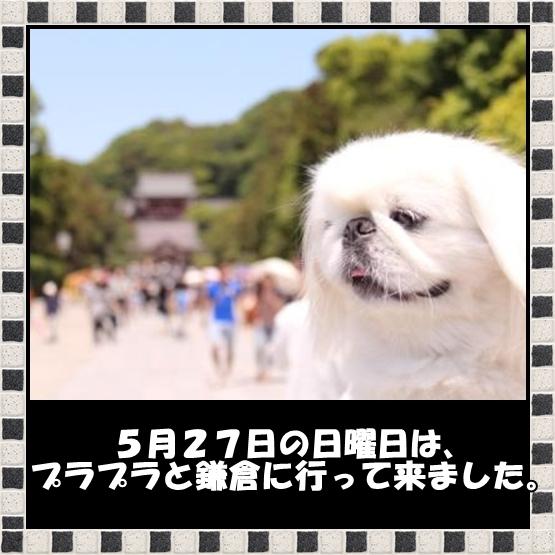 2_20120531083054.jpg