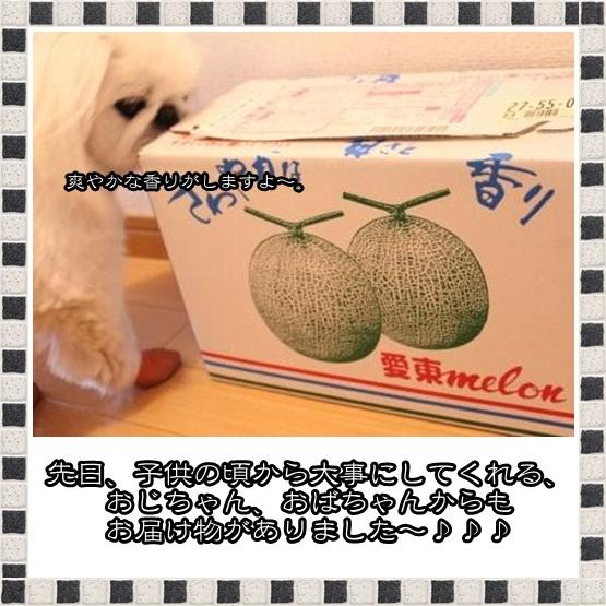 3_20120618150331.jpg