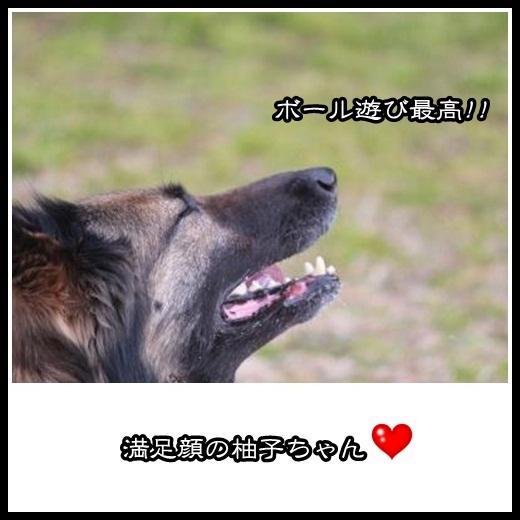 3_20130221111525.jpg