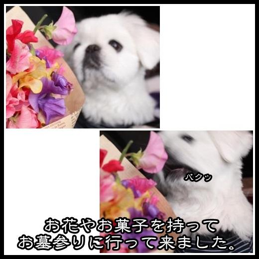 3_20130225143210.jpg