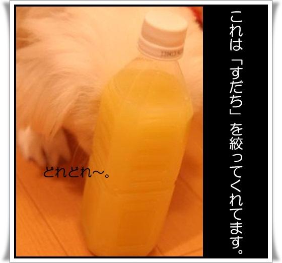 4_20120922145122.jpg