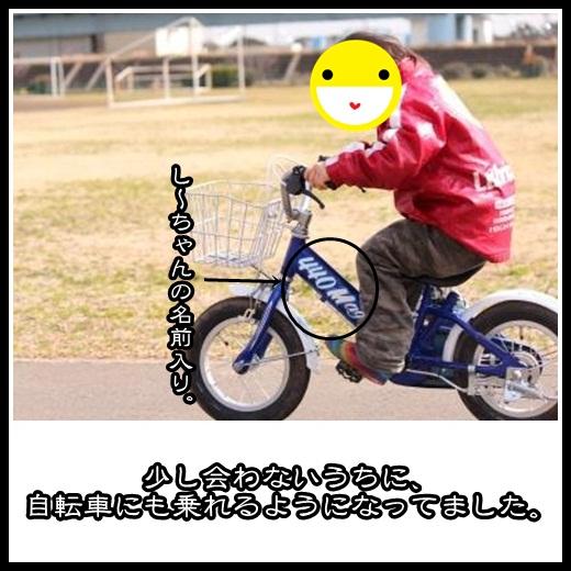 5_20130209162831.jpg