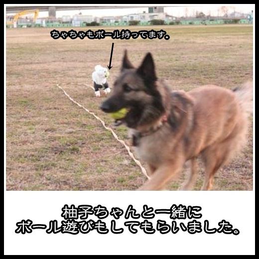 5_20130214142047.jpg