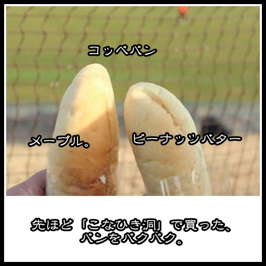 5_20130223125212.jpg