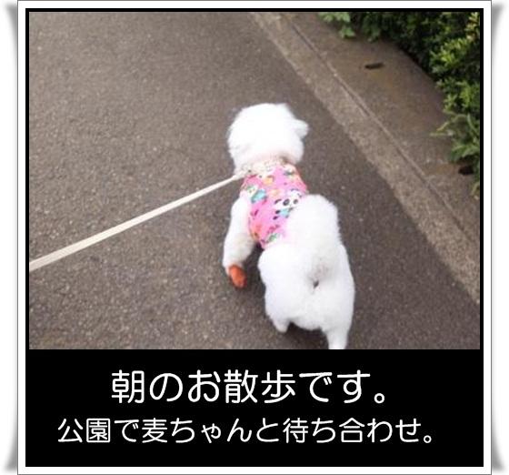 7_20120922145141.jpg