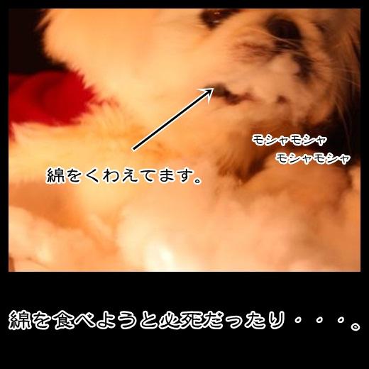 7_20121105164152.jpg