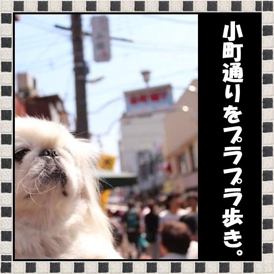 91_20120531083113.jpg