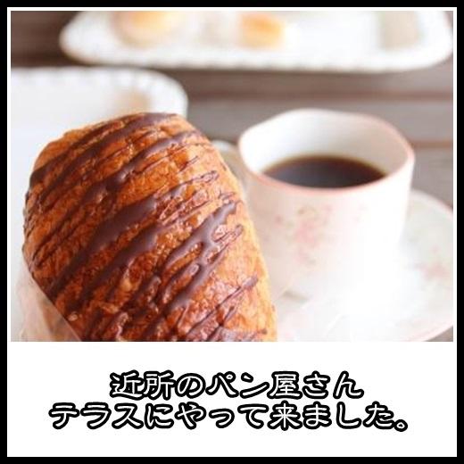 91_20130228113913.jpg