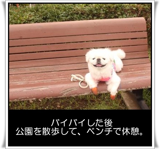 92_20120922145221.jpg