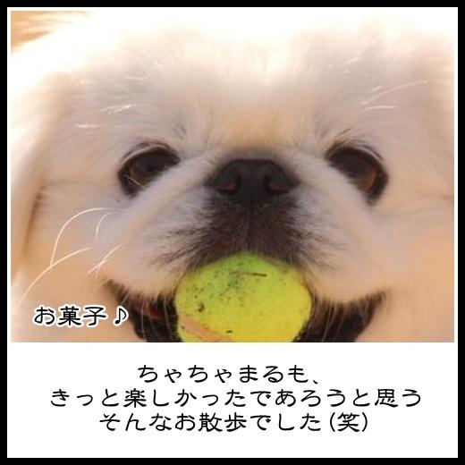 92_20130201131108.jpg