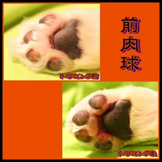 93_20121024134523.jpg