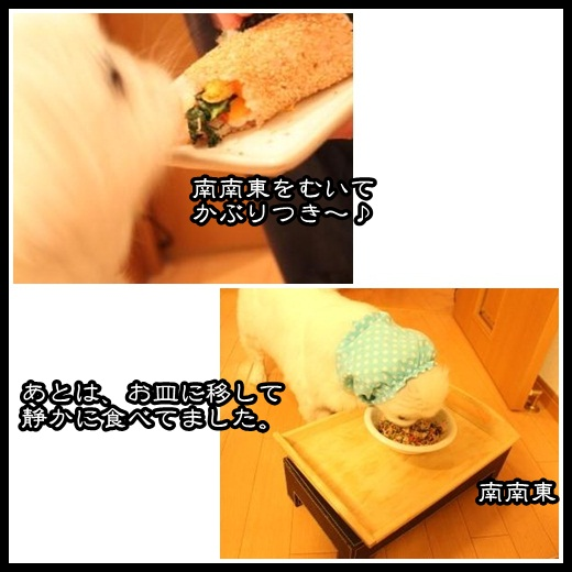 990_20130206111449.jpg