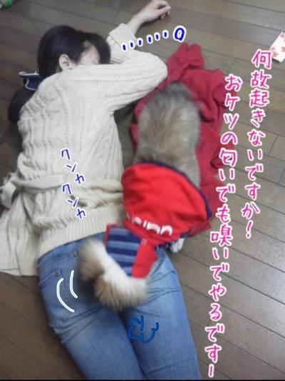 fc2blog_20140114152624c2b.jpg