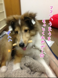 fc2blog_20140125204718d63.jpg