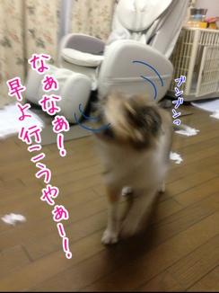 fc2blog_20140127192342f0d.jpg