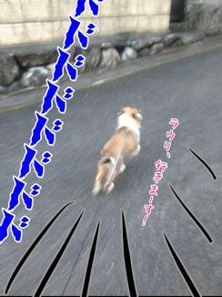 fc2blog_201401271926461e4.jpg