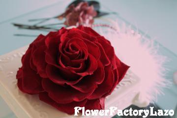 088_convert_20121105144825.jpg