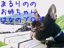 _kMagL2ccPpR7Eo_1349330668_mj.jpg
