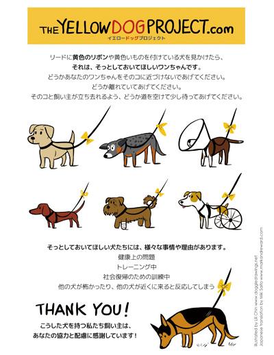 yellowdog.jpg