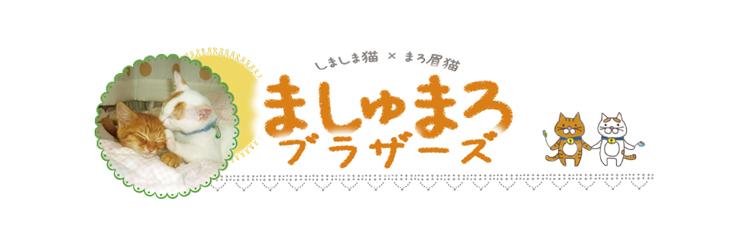 masyumaro-title--.jpg