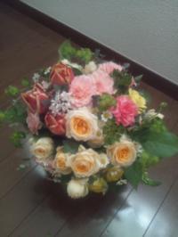 20130306_DSC_0698.jpg