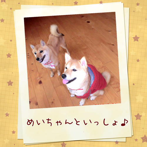 201301251155164b3.png