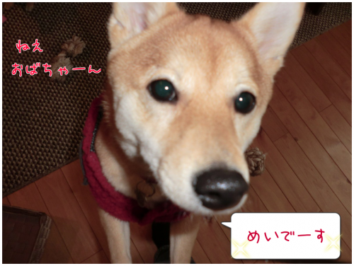 201301251458043c0.png