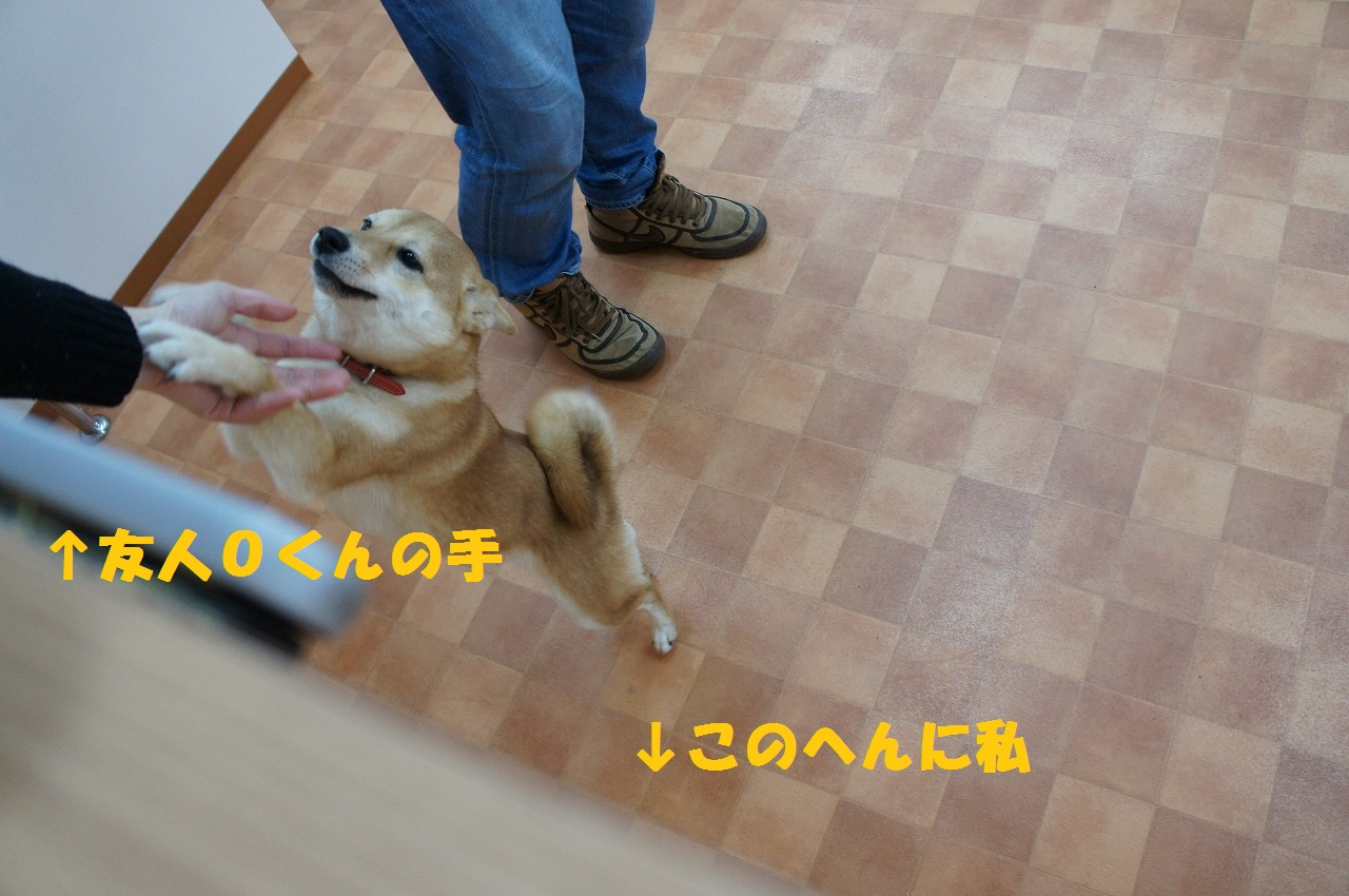 20121217204929da1.jpg