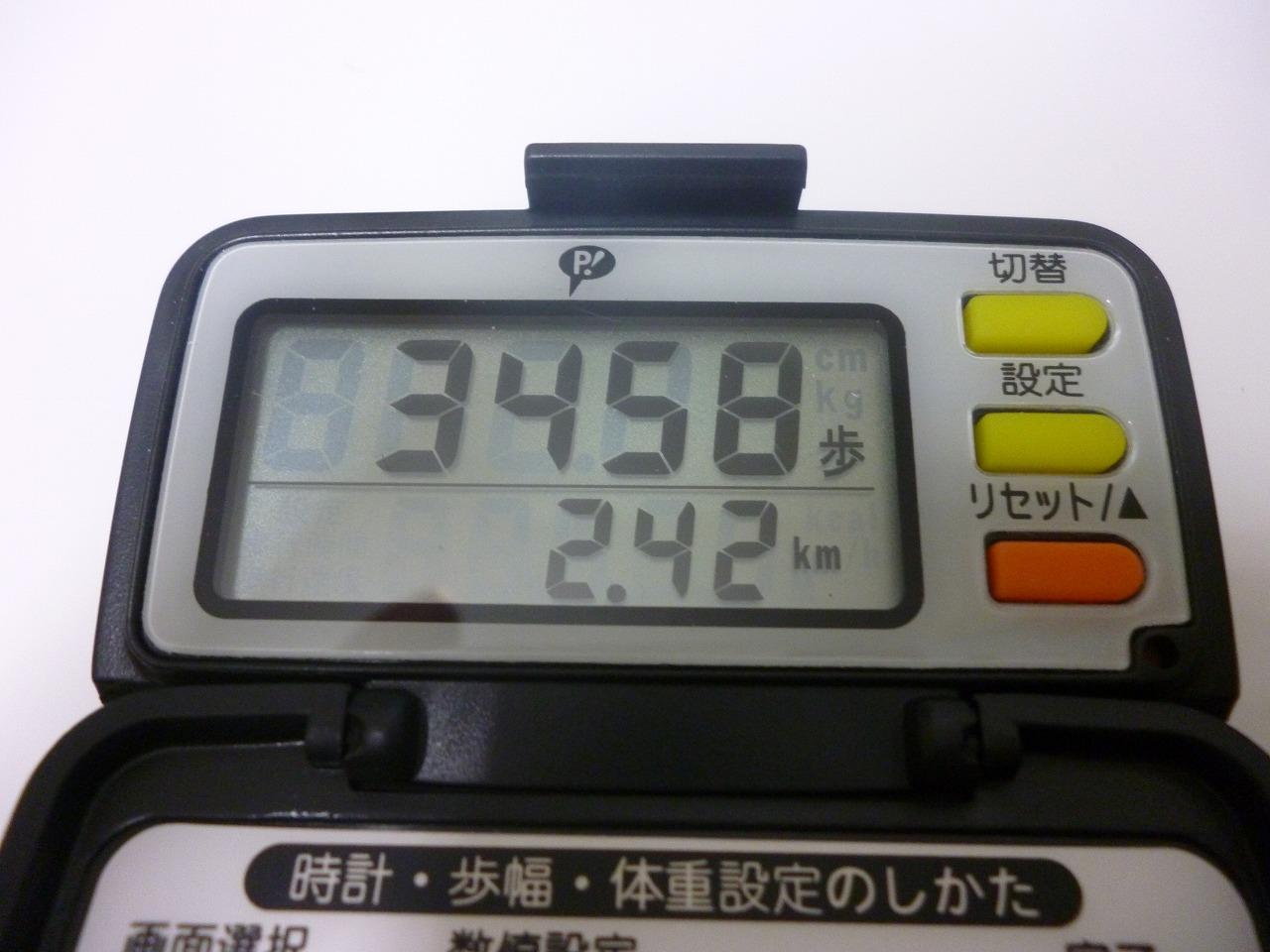 P1070872.jpg