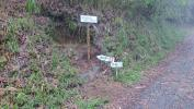 20120504つるべ落としの滝10